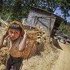 Mtoto wa kiuke akitumikishwa huko karibu na Kathmandu, mji mkuu wa Nepal