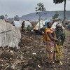 Des personnes déplacées par les combats entre le M23 et les FARDC dans les environs de Goma.