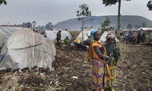 People displaced by fighting between M23 and FARDC set up camp on the outskirts of Goma.