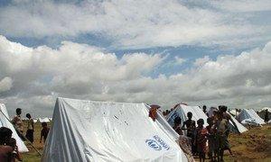 An IDP camp near Sittwe in Rakhine state, Myanmar.