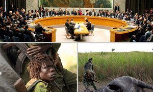 CITES welcomes the Security Council's call for investigation into the alleged involvement of the Lord's Resistance Army (LRA) in the poaching of African elephants.