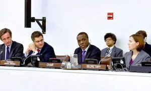 Ambassador Nelson Messone of Gabon, Chair of the General Assembly's Fourth Committee, during discussions.