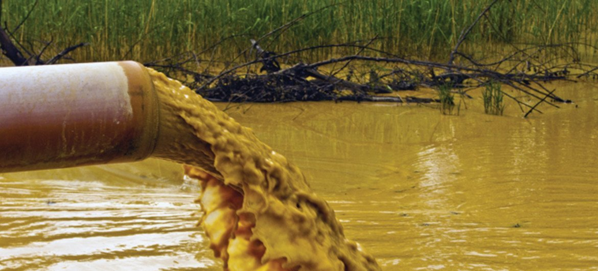 Endocrine-Disrupting Chemicals can enter the environment through industrial and urban discharges, agricultural run-off and the burning and release of waste.