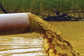 Sustancias químicas pueden entrar en el medio ambiente a través de los desechos industriales, urbanos y agrícolas.