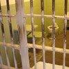 يتم إحتجاز السجناء الفلسطينيين في السجون الإسرائيلية في أماكن  تشبه هذا المكان. صورة من إيرين