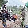 Civiles desplazados de Goma<br>(Foto de archivo: Ivain Liechti)