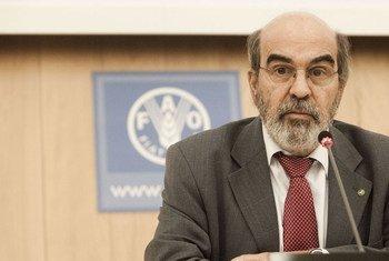 Le Directeur général de la FAO, Jose Graziano da Silva. Photo FAO/Alessandra Benedetti