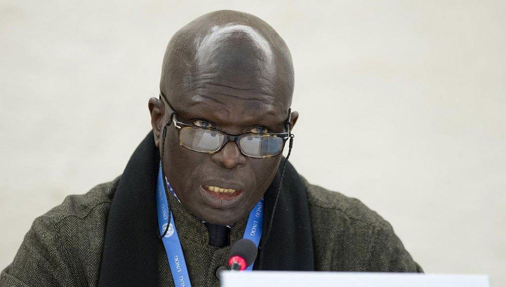Doudou Diène, rais wa tume ya uchunguzi Burundi