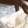 El PMA distribuye arroz en Haiti. Foto archivo