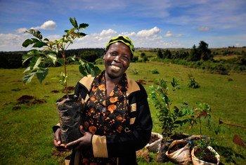 Une agricultrice d'Ainabkoi, au Kenya.