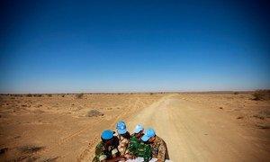 Walinda amani wa Mongolia katika ujumbe wa magharibi mwa jangwa la Sahara (MINURSO) wakijadiliana kuhusu ramani  wakati wakiwa safarini.