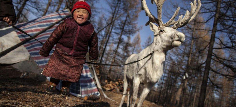 Умение жить в гармонии с природой и понимать ее - отличительная черта коренных народов