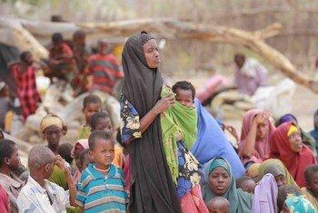 Des déplacés somaliens à Dhobley, près de la frontière entre la Somalie et le Kenya.