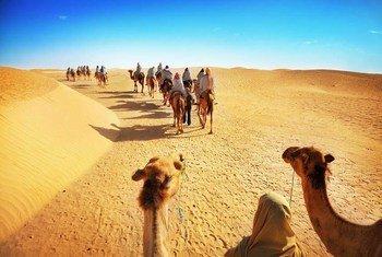 В ООН призывают использовать преимущетва туризма и сделать его более экологичным Фото ЮНВТО