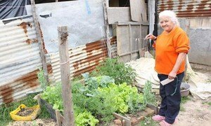 UN Trust Fund for Human Security (UNTFHS) has empowered over 500 families in Soacha, Colombia, to improve food security and nutrition in a self-sufficient manner.