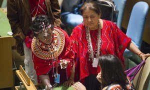Delegates in the General Assembly Hall at the opening of the twelfth session of the Permanent Forum on Indigenous Issues.