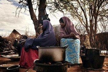 Refugees cook a meal in Dadaab camp, Kenya.
