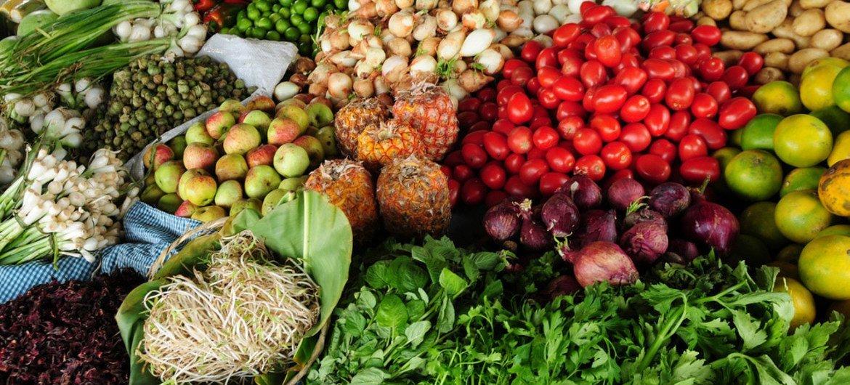 Sistemas alimentares são essenciais para apoiar 3 bilhões de pessoas desnutridas em todo o mundo