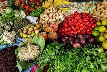 Medição mensal do custo dos produtos alimentares destaca que valor de setembro está 5% acima do mesmo período de 2019.
