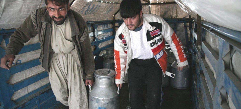 En Afghanistan, des travailleurs laitiers transportent un bidon de lait en Afghanistan.