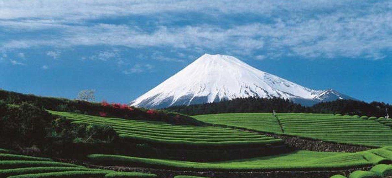 فوجيسان، المكان المقدس ومصدر الإلهام الفني (اليابان).