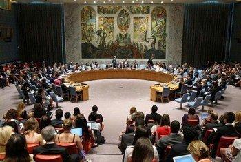 Le Conseil de sécurité des Nations Unies.