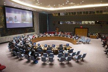 Le Conseil de sécurité de l'ONU.
