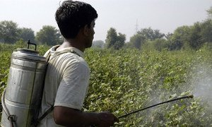 Highly hazardous pesticides should be phased out because it has proven very difficult to ensure proper handling.
