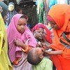 Polio vaccination campaign being carried out in Somalia.