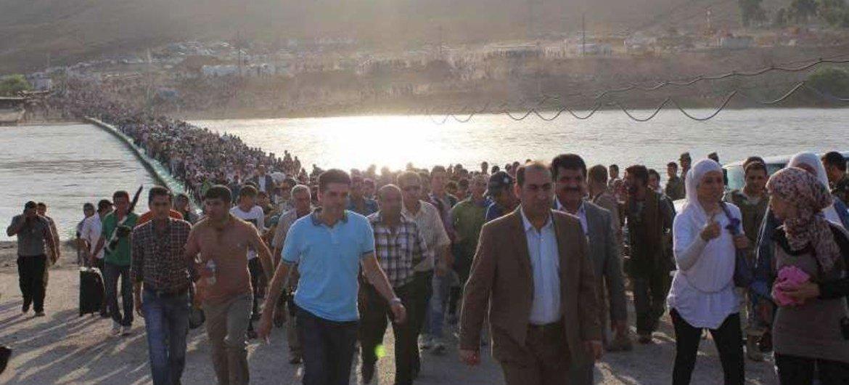 Llegada masiva de refugiados sirios<br>(Foto: ACNUR-G. Gubaeva)