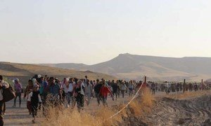 Des Syriens arrivent au Kurdistan iraquien.