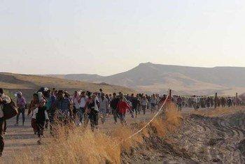 Cruce de sirios a Iraq<br>Foto: ACNUR- G. Gubaeva
