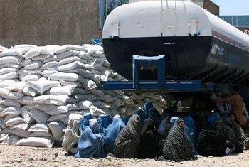 Des Afghanes font la queue à un point de distribution du Programme alimentaire mondiall (PAM) à Herat, en Afghanistan.