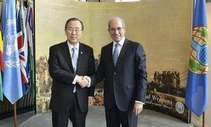 Secretary-General Ban Ki-moon (left) meets with the Director-General of the Organization for the Prohibition of Chemical Weapon (OPCW) Ahmet Üzümcü in The Hague.