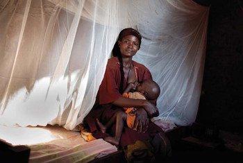 Mosquiteros con insecticida. Foto; Roll Back Malaria Partnership (RBM)/Benjamin Schilling l PSI