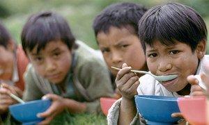 Cегодня в мире голодают сотни миллионов человек