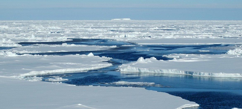Россия считает своей площадь морского дна в пределах всего российского полярного сектора