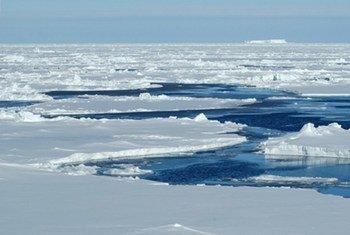 L'activité humaine va encore réchauffer la Terre, avec des effets dramatiques sur le temps, le niveau de la mer et l'Arctique.