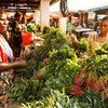 A women sell vegetables at a market in Lubumbashi, Katanga province, DR of Congo.