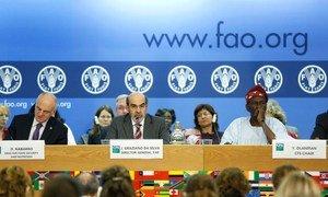 Graziano Da Silva-Director General, FAO (Centre) addressing the Committee on World Food Security at FAO headquarters. FAO/Alessia Pierdomenico