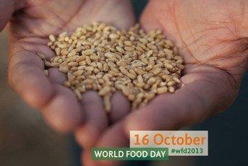Journée mondiale de l'alimentation, le 16 octobre 2013.