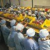 Workers in a food processing plant.