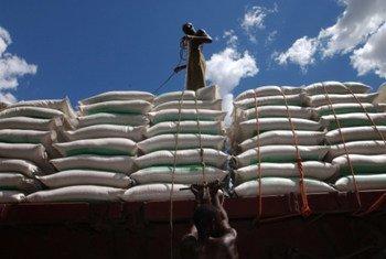Stockage de farine pour le transport.