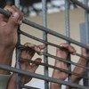 Photo: UNHCR/V. Tan