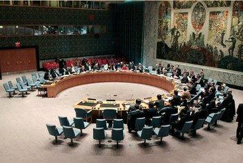 Aperçu du Conseil de sécurité en session.