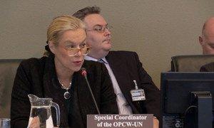 La Coordonnatrice spéciale de la mission conjointe en Syrie de l'Organisation pour l'interdiction des armes chimiques (OIAC) et de l'ONU, Sigrid Kaag.