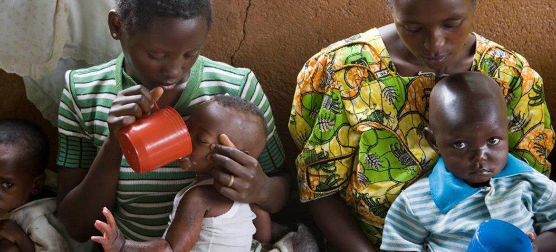 Niños afectados de malnutrición reciben dosis energéticas y antibioticos  Foto:  OMS/C. Black