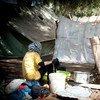 Desplazados al oeste de Siria (Foto: ACNUR)