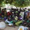 Desplazados por la violencia en la República Centroafricana (Foto de archivo: PMA/Alex Masciarelli)