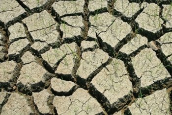 Hundreds of millions of hectares, nearly the size of Brazil, face degradation threat.